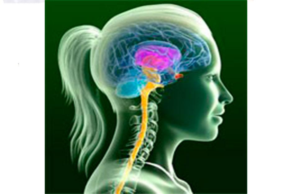 psicología coruña mindfulness